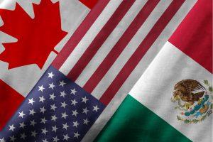 الولايات المتحدة تسمح بدخول المسافرين الملقحين من كندا والمكسيك